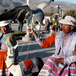 Tour en Arequipa Cañon del Colca 02 Dias / 01 Noche