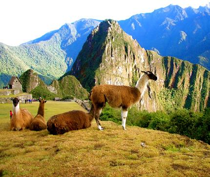 Visita Cusco y Machu Picchu