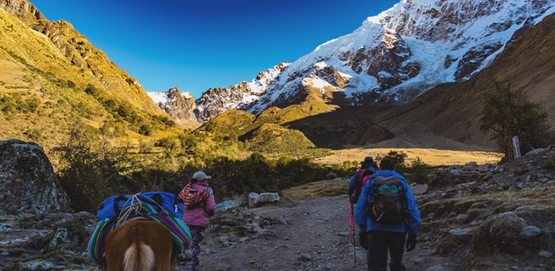 Tour Salkantay Trek